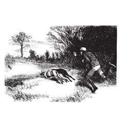 Rabbit hunting vintage vector