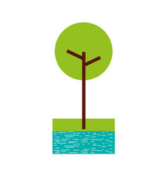 tree with river and grass natural foliage park vector image