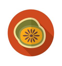 Kiwi flat icon tropical fruit vector