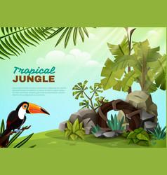 tropical jungle toucan garden composition poster vector image