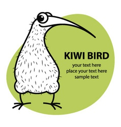 Cartoon kiwi bird vector