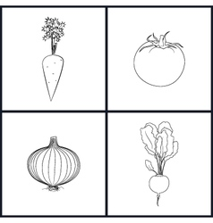 Icons carrots tomatoes onions beet vector