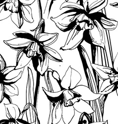 Floral flower narcissus seamless hand drawn vector image vector image