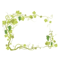Green vineyard frame vector