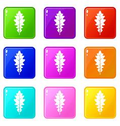 Oak leaf icons 9 set vector