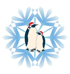 penguins vector image