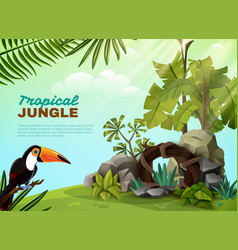 tropical jungle toucan garden composition poster vector image