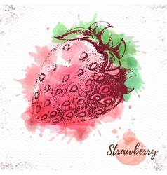 Watercolor strawberry sketch vector
