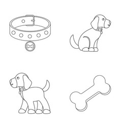 Bone collar sit fooddog set collection icons vector