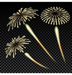 Bright fireworks in honor of the feast on gradient vector
