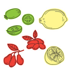 hand drawn sketch fruits - pineapple guava lime vector image vector image
