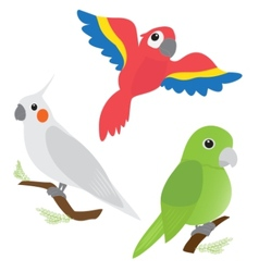 Set of cartoon parrots vector image vector image