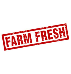 Square grunge red farm fresh stamp vector