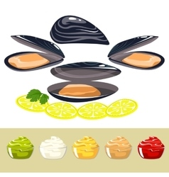 The shells of mussels with lemon and sauce vector image vector image