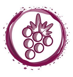 delicious grape fruit inside of bubble vector image