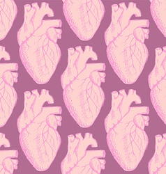 Sketch human heart in vintage style vector