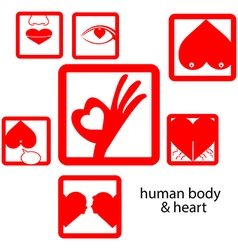 Red icon human body and heart love concept vector