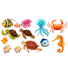 Different kinds of sea animals vector
