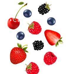 Set of juicy berries vector