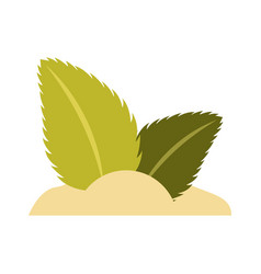 Sugar with tea leafs product icon vector