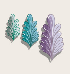 Nice different plants decoration botany vector
