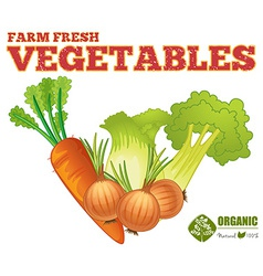 Farm fresh vegetables vector