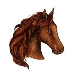 Brown stallion horse head sketch vector