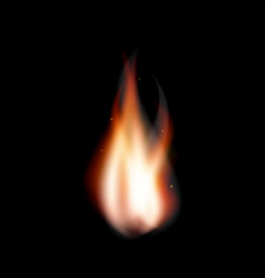 Realistic fire flame bonfire with sparkles vector