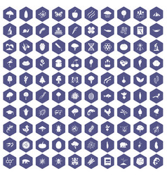 100 microbiology icons hexagon purple vector