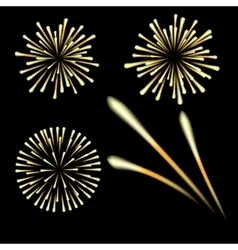 Bright fireworks in honor of the feast on a black vector