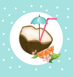 Coconut cocktail drink summer refreshment vector