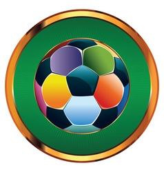 Colorful Soccer Ball2 vector image