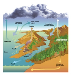 Hydrologic cycle vector