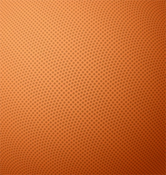 Basketball texture with bumps vector image