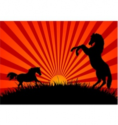 Two horses at sunset vector