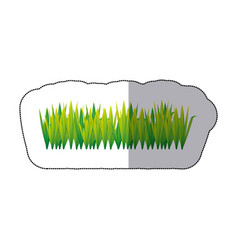 Colorful grass with leaves icon vector