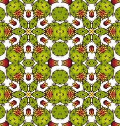 Kaleidoscope of succulents vector image vector image