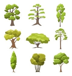 stylized trees vector image