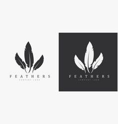 Logo design with three feathers and company name vector