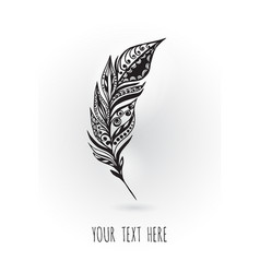 beauty peacock feather hand drawing vector image