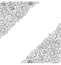 Camellia angular composition vector