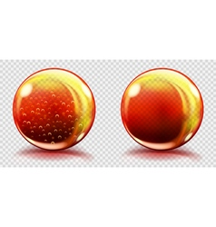 Two big orange glass spheres vector