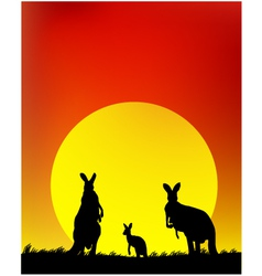 Silhouette of the kangaroo family vector