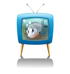 A big fish in the television vector image
