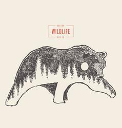 Silhouette wild bear forest wildlife drawn vector