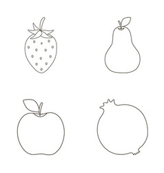 Strawberry pear apple pomegranatefruits set vector
