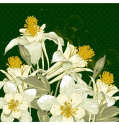 Beautiful Background with White Blooming Flowers vector image