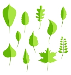 Spring green leaves in flat style set vector