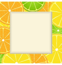 Citrus fruit frame background vector image