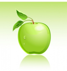 apple green vector image vector image